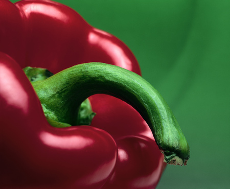 Close-up view of stem of a red pepper LANG_EVOIMAGES