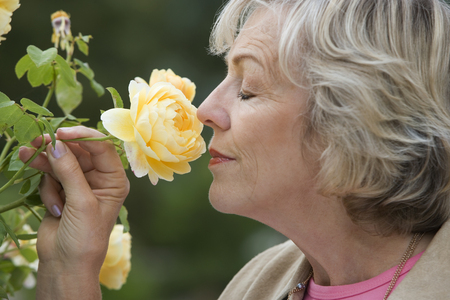 Senior woman smelling yellow flower, eyes closed, close-up, profile