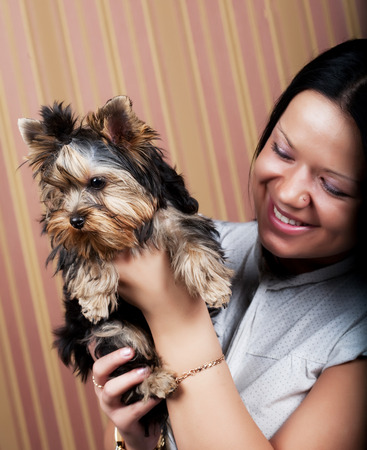 yorkie: young girl with her Yorkie puppy Stock Photo
