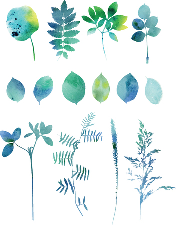 leaf pattern: Set of blue watercolor leaves and grass.