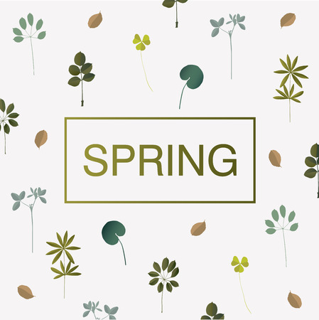 Spring card with different leaves and grass.