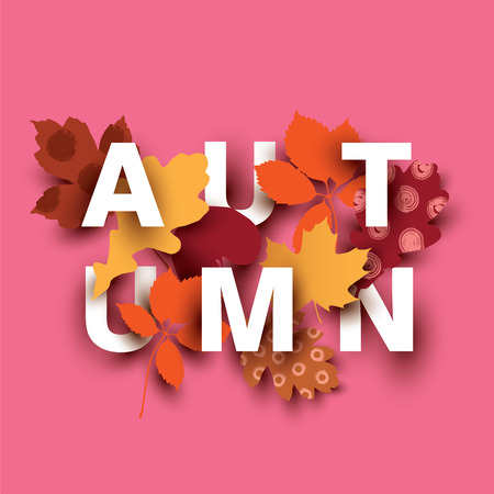 Autumn card with different plant elements on pink background.
