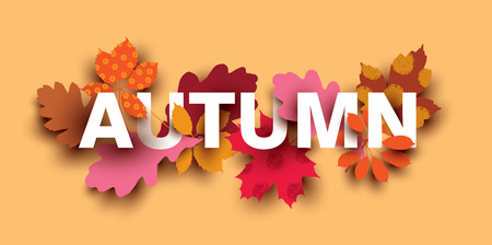 Autumn card with different plant elements. Colorful illustration for your banner