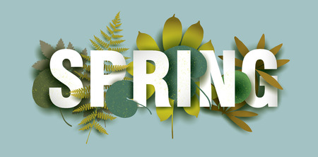 Spring card with different plant elements. Colorful illustration for your banner, poster, flyer. Vector.