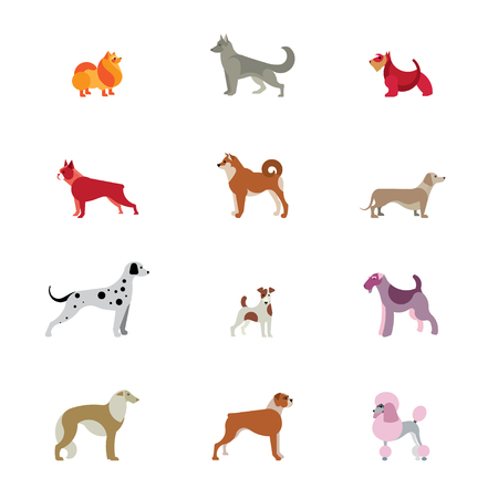 Vector Set of different Dog Breeds. Dalmatian, Terrier, Shiba Inu, Dachshund, Shepherd, Poodle, Russian Greyhound, Spitz, Boxer, etc.
