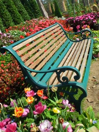garden bench: Bench in Garden