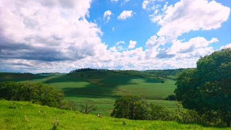 Farm fields in the north of Paraná - Brazil. Zdjęcie Seryjne