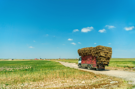 Rural landscape with a truck loaded with straw packs in Morocco