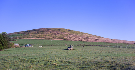Farm fields and a hill in a county Cork on a sunny morning in a spring. Ireland.