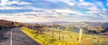 Fences and the road in a county Cork on a hazy spring morning. Ireland.
