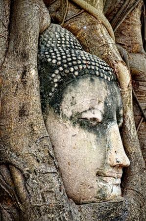 budha: FACE OF BUDHA