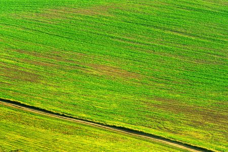 diagonal lines: green brown field detail with diagonal lines and a road Stock Photo