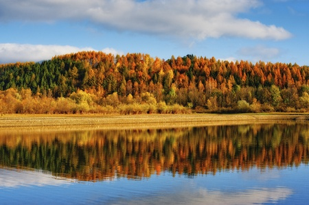 liptov: autumn forest and reflection in watter in sunny day