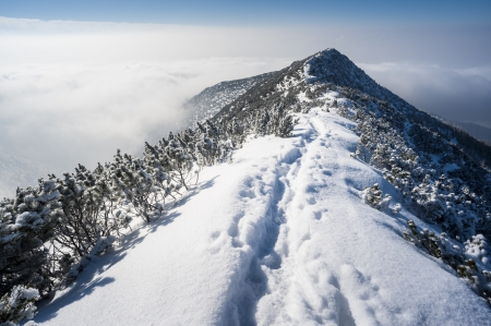 liptov: Mountains in a sunny day in the end of winter
