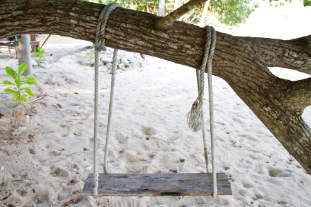 Swing on the beach photo