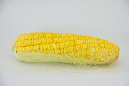 Fresh raw corn cob isolated on the white photo