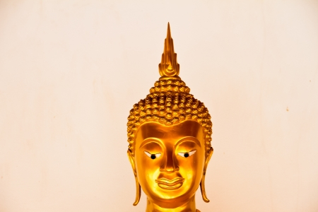 Buddha Head on white background photo