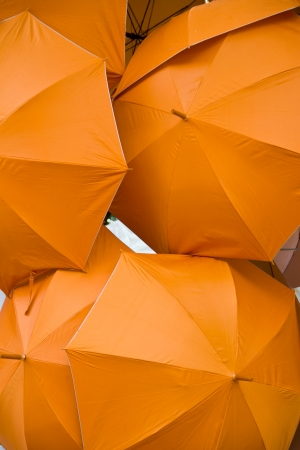 orange umbrella photo