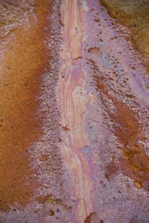 Rust on soil photo