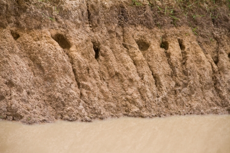 erosion: The erosion of soil  Stock Photo