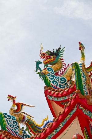 Chinese golden dragon photo