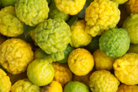 Kaffir lime Or Bergamot Fruit,This Fruit is Like Amazing Herb in Thailand