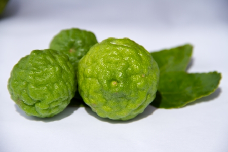 Kaffir lime Or Bergamot Fruit Isolated On White,This Fruit is Like Amazing Herb in Thailand Stock Photo - 16470338