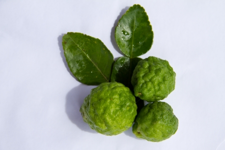 Kaffir lime Or Bergamot Fruit Isolated On White,This Fruit is Like Amazing Herb in Thailand Stock Photo - 16470487