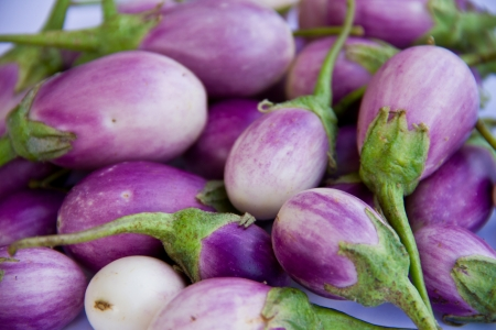 Eggplant purple  photo