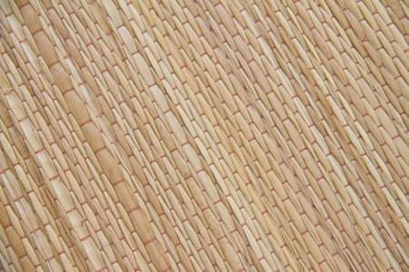 reed texture background photo