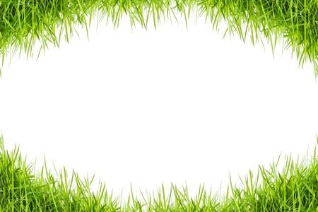 green grass frame photo