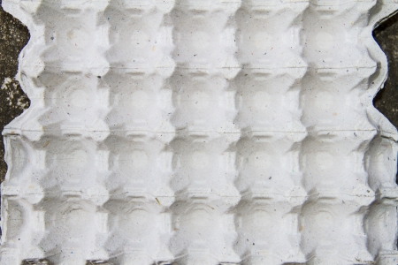 Egg tray photo