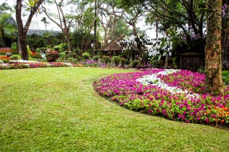 Mae Fah Luang Garden,locate on Doi Tung, Chiangrai Province, Thailand Фото со стока - 23171825