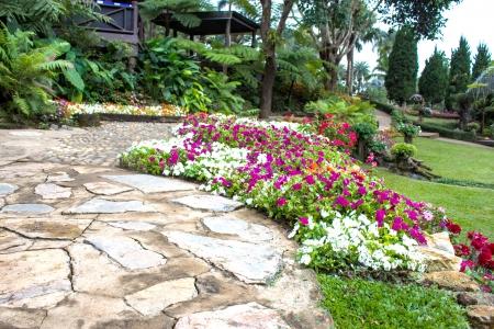 doi: Mae Fah Luang Garden, individuare il Doi Tung, provincia di Chiangrai, Thailandia