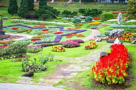 Bromeliad at Mae Fah Luang Garden,locate on Doi Tung,Thailand photo