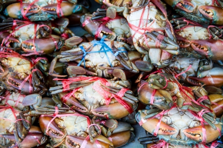 blue swimmer crab: Crabs For Sale in Market Stock Photo