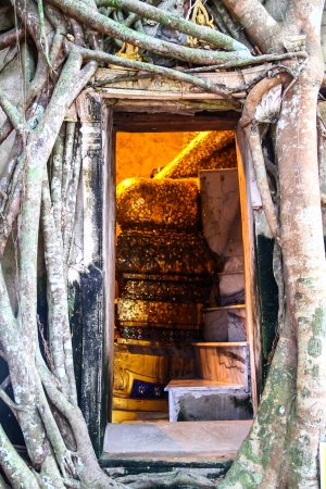 Buddha statue view from a window with banyan tree root covering temple of Wat Bang Kung Samut Songkhram, Thailand  photo