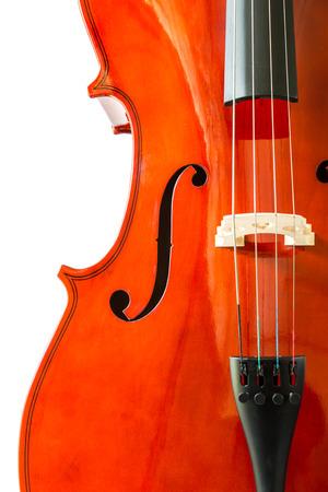 Violin on white  Stock Photo