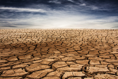 mire: dry and cracked ground