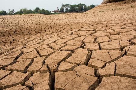 aridness: drought land