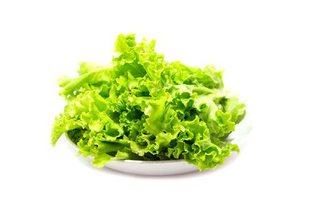 vibrat color: salad vegetable