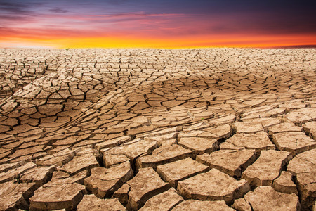 barrenness: Dry crack earth Stock Photo