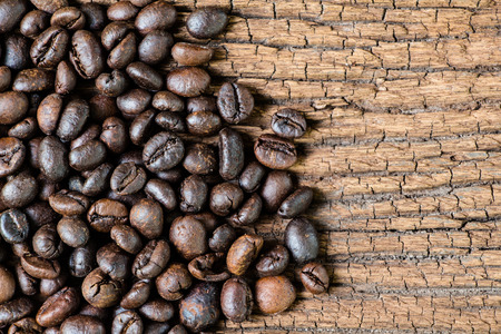coffeetree: Coffee seed on old wood