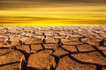 Drought land Crack soil