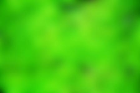 green blured background