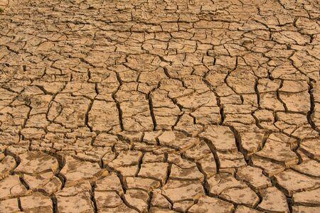 Dry crack soil texture