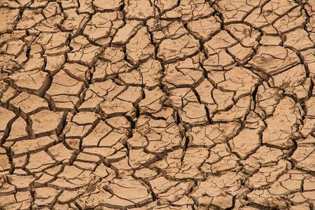 drought land background Фото со стока