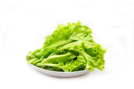 lettuce vegetable on white background