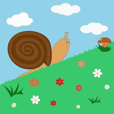 Snail creeping for the mushroom
