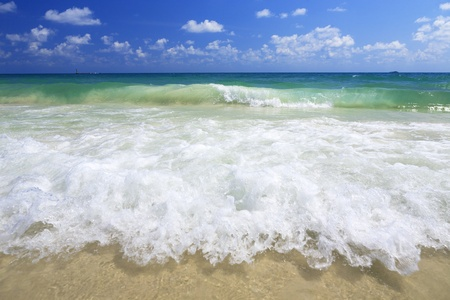 sea wave on the beach photo